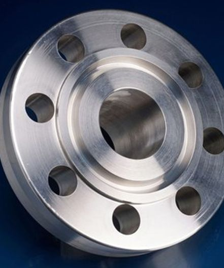 SS Ring Type Joint Flanges